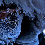 Intel wspiera Bena Saundersa w polarnej ekspedycji wszech czasów